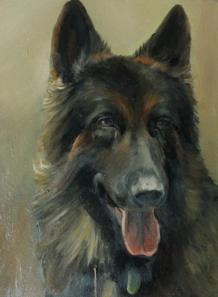 Alex Jabore-German Shepherd