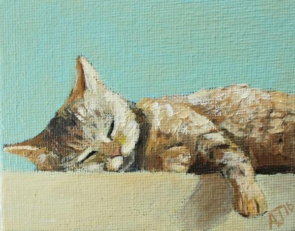 Alex Jabore-Sleeping Cat