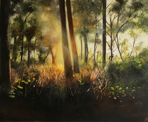 Kimberley Harris-Sunbeams on the Woodland