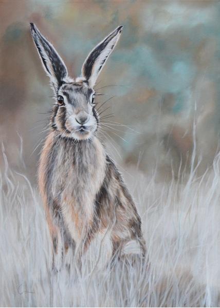 NICOLA COLBRAN-Hare at Dawn