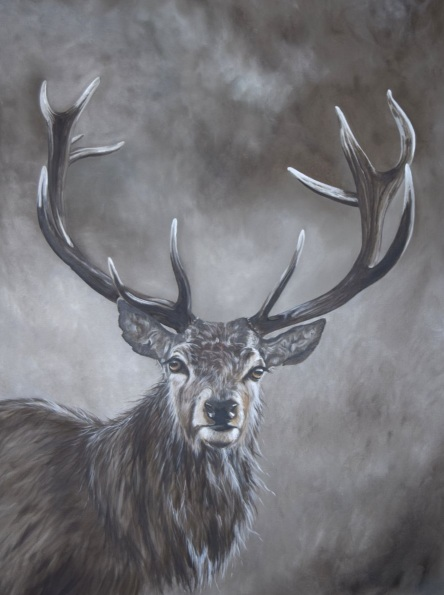 NICOLA COLBRAN-Stag in the Mist
