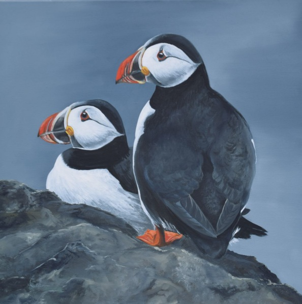 NICOLA COLBRAN-Two Puffins on a rock