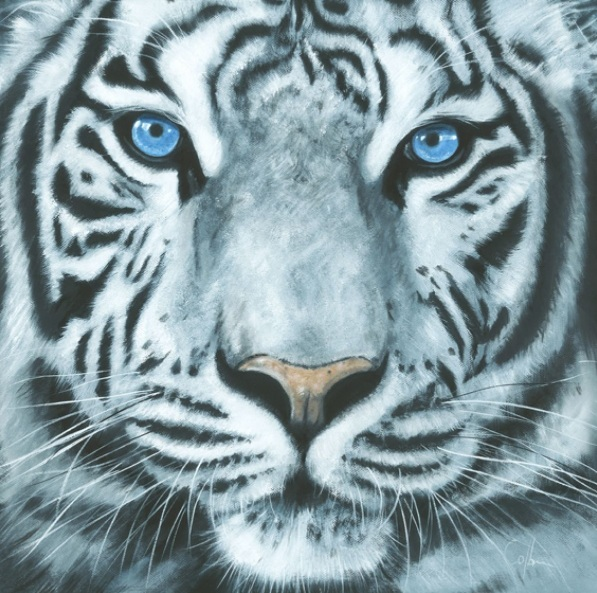NICOLA COLBRAN-White Tiger