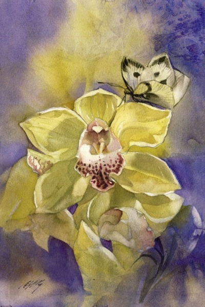 Alfred Ng - Cymbidium orchid with butterfly