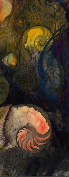 Kathy Morton Stanion - Nautilus Shell 955