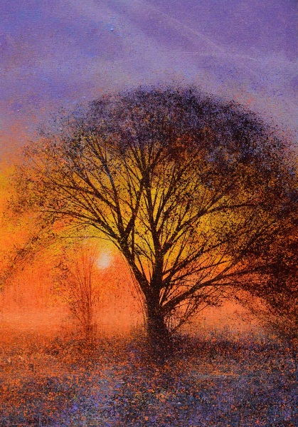 Marc Todd - The Big Tree At Sunset