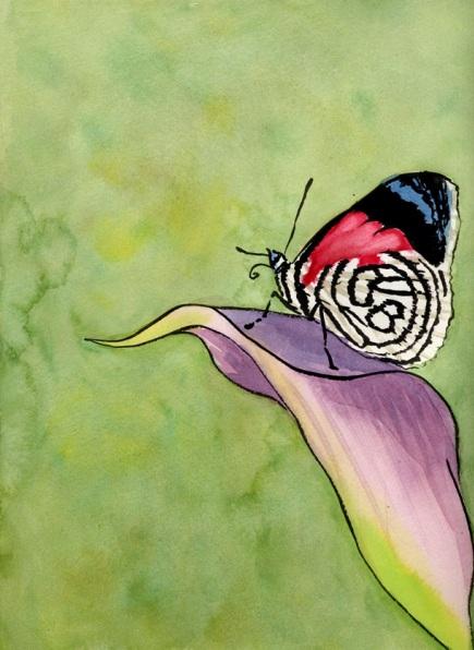 Marcel Garbi - Butterfly