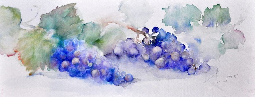 Beata van Wijngaarden - 2 BUNCH OF GRAPES