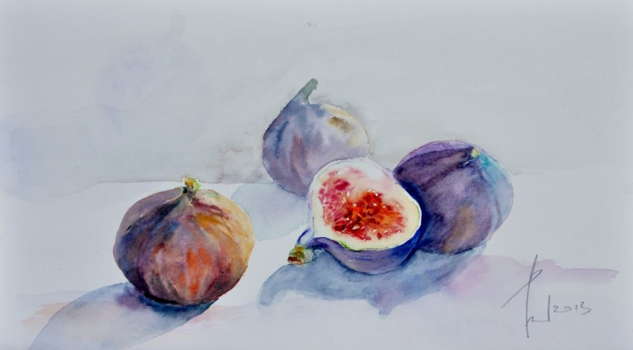 Beata van Wijngaarden - The FIGS