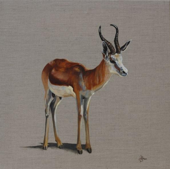Hannah Bruce - Gazelle