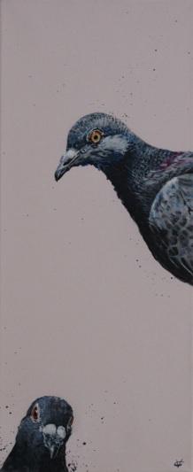 Victoria Coleman - Two pigeons