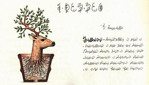 codex seraphinianus deer