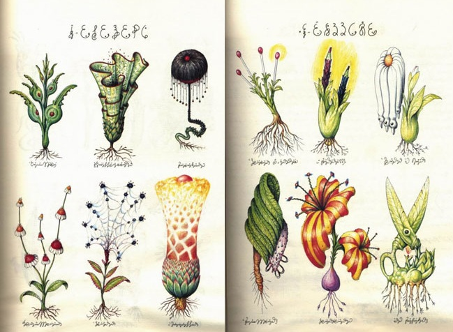 codex seraphinianus flowers
