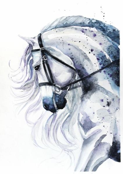 Karolina Kijak - Horse portrait