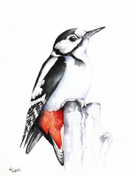 Karolina Kijak - Woodpecker