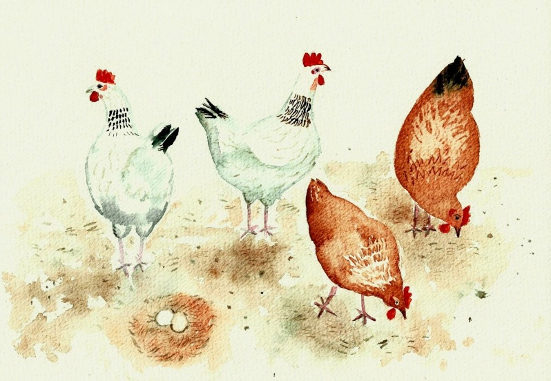 Mary Stubberfield - Happy Chickens