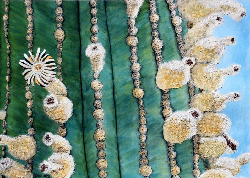 Patricia Pasbrig - Cactus Puffs