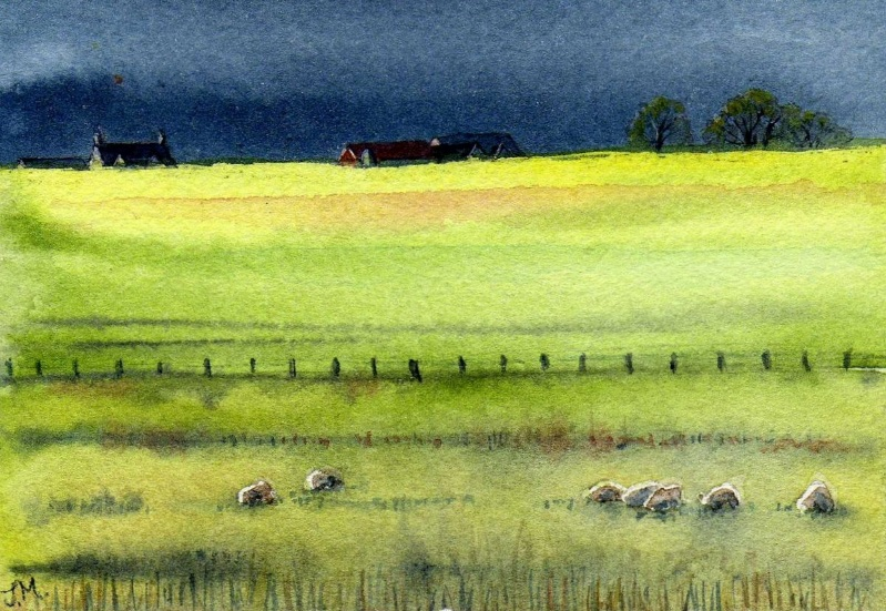 JULIE MORRIS - Green Fields