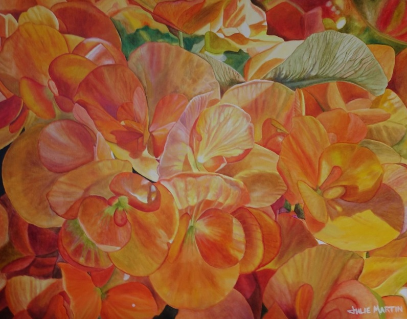 julie-martin-begonia-morning
