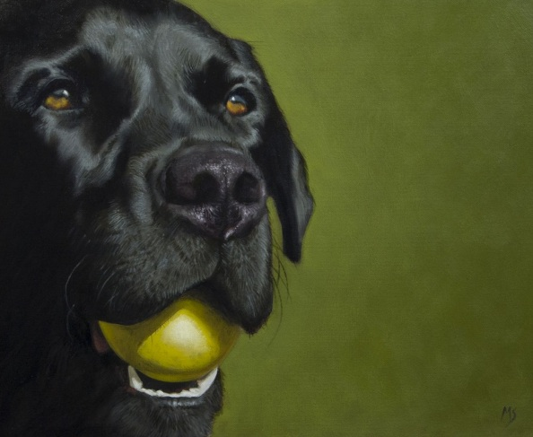 mike-skidmore-lab-and-ball