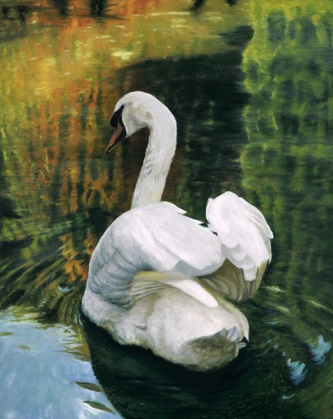 andrew-mcneile-jones-autumn-swan