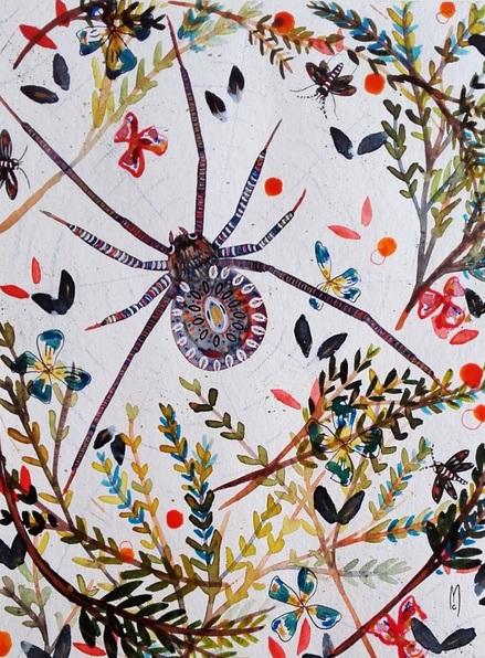 celine-marcoz-spider