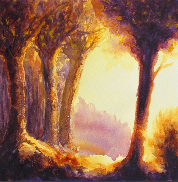fabienne-monestier-evening-in-the-forest