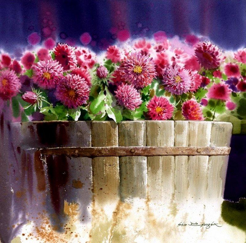shin-jong-sik-chrysanthemum