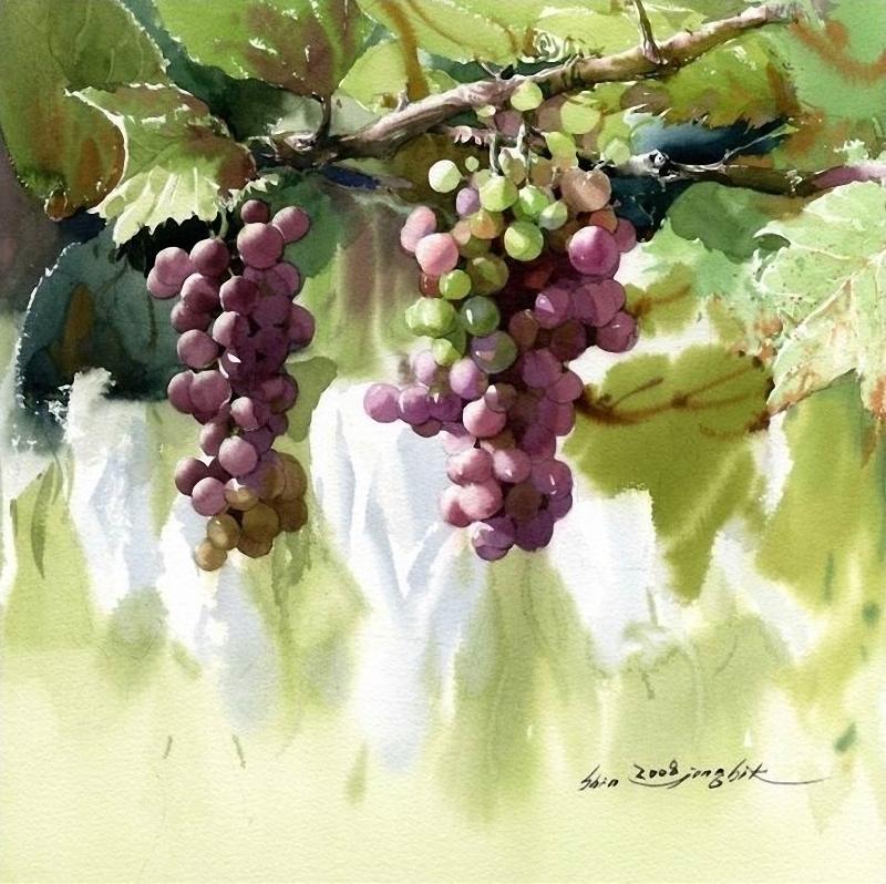 shin-jong-sik-grapes