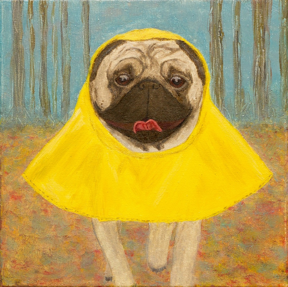 yuliia ustymenko wet but happy pug