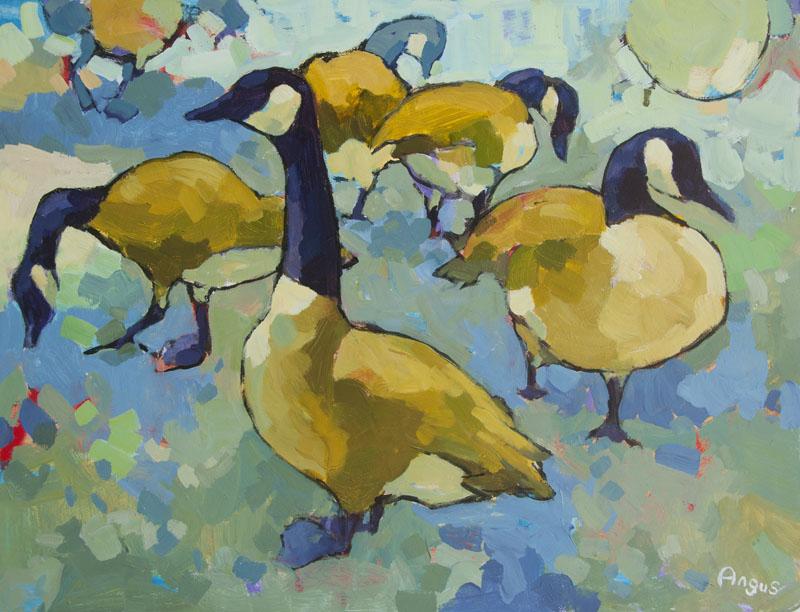 Angus Wilson - Canadian Geese