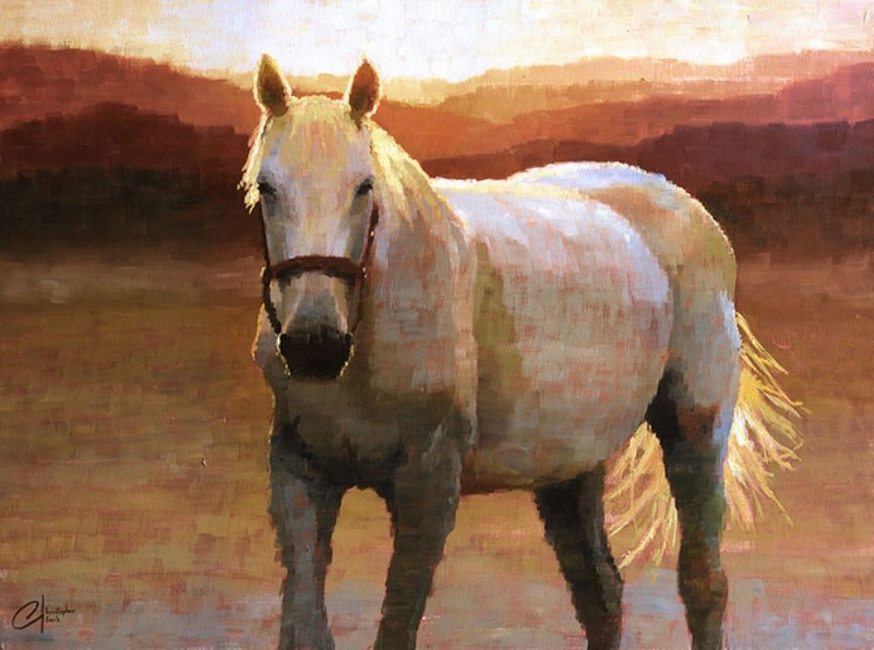 christopher-clark-grey-horse-at-sunset