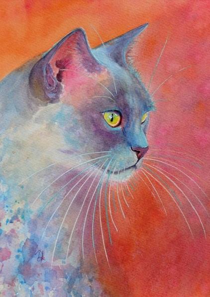 denise-laurent-blue-girl-burmese-cat