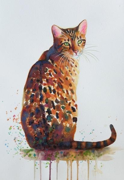 denise-laurent-glitter-girl-bengal-cat
