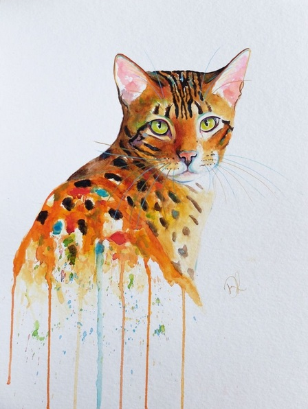 denise-laurent-that-look-bengal-cat