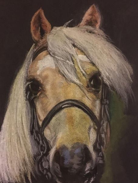 Jimmy Walmsley - Palomino Welsh Section A Pony