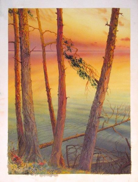 Valeriy Grachov - Pine trees besides Dnepr