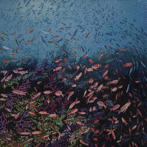 Carlos J. Marquez - Swallowtail Seaperch
