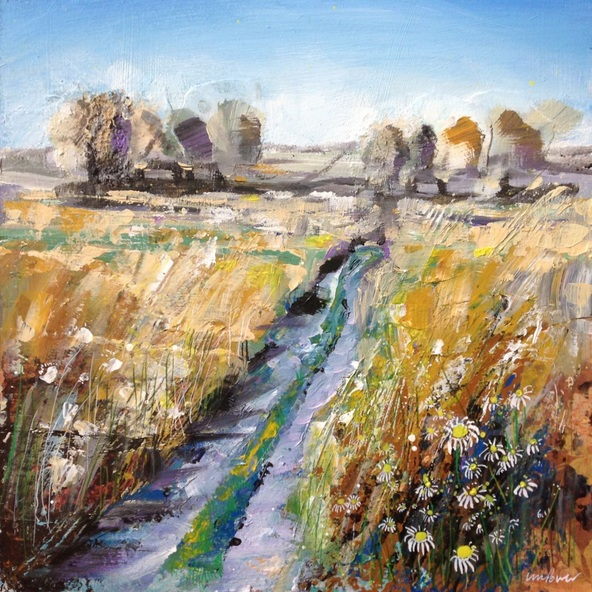 Luci Power - Wheatfield daisies
