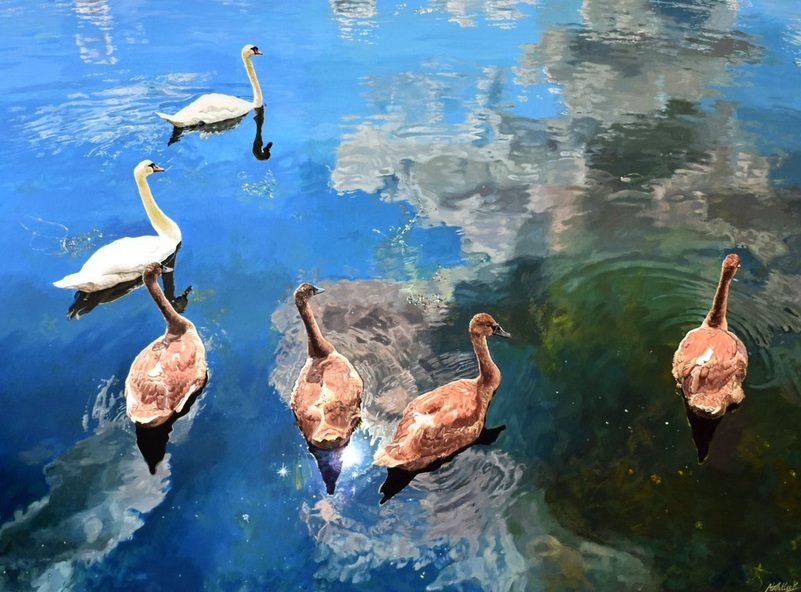Abi Whitlock - Swimming in the Sky Swans on a Mirror Lake