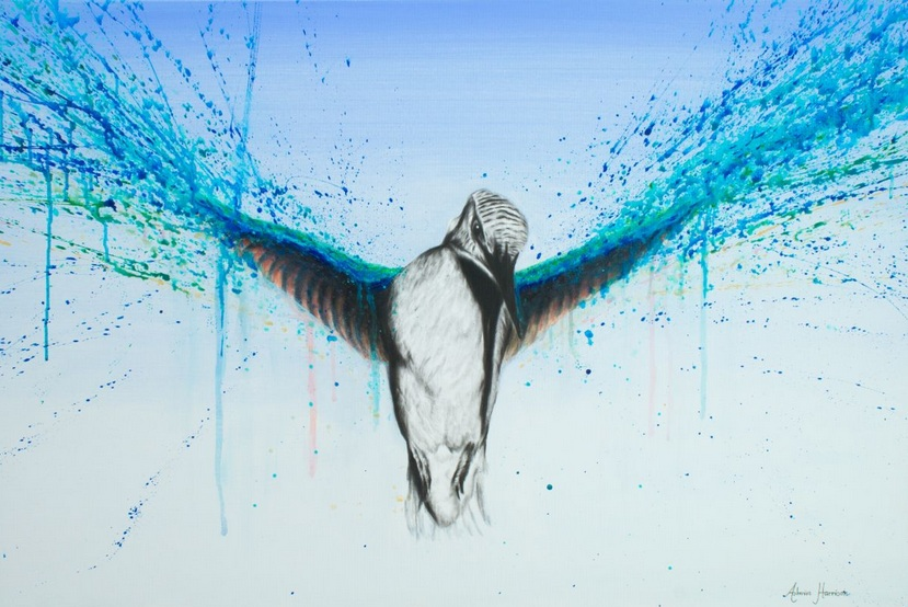 Ashvin Harrison - Kingfisher Rise