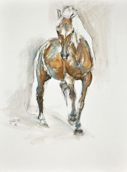 Benedicte Gele - Equine Life 2
