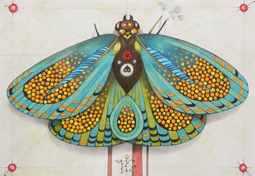 FEDERICO CORTESE - psychedelic butterfly