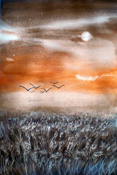 Giorgio Gosti - wheat field