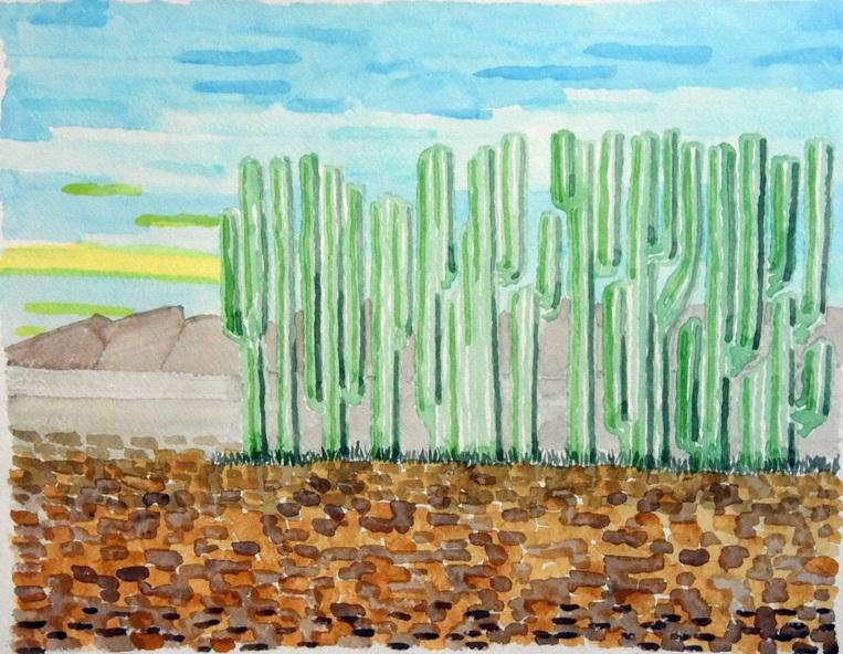 Piergiorgio Rossi - Il recinto dei cactus
