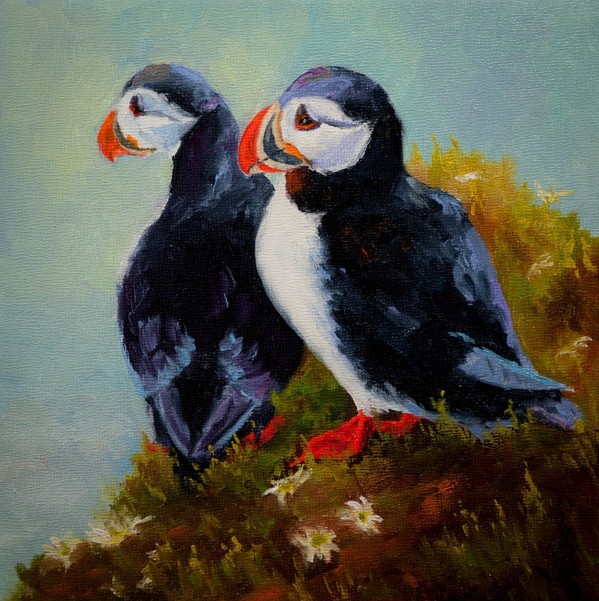 Dan Twitchell, OPA, AIS - Double Puffin