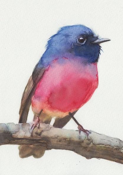 REME Junior - Pink Robin