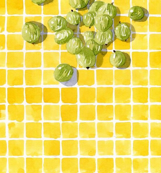 Hannah Clark - Gooseberries on Yellow