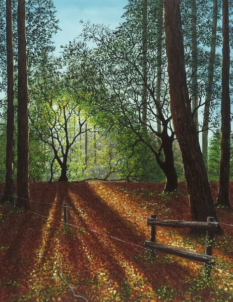 Hazel Thomson - Forest Clearing