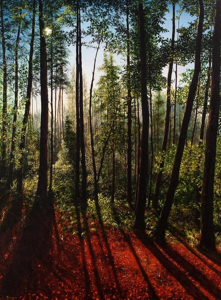 Hazel Thomson - Shadows in The Forest